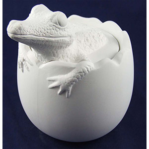 Alligator Hatching from Egg